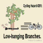 cycling hazard low hanging branches bike still going