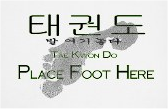 place foot here - tae kwon do